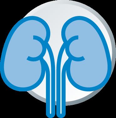 El aumento en la utilización de diálisis peritoneal ahorra 22 millones de euros en cuatro años