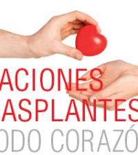 PDF DONACIONES