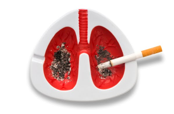 El tabaquismo altera elementosgenéticos móviles del ADN vinculadoscon la aparición del cáncer
