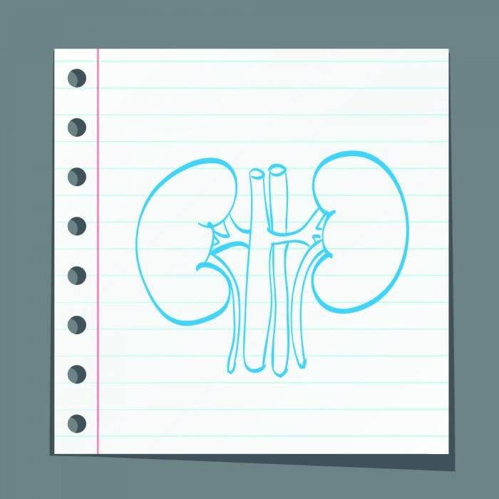 Los expertos debaten sobre enfermedad renal diabética