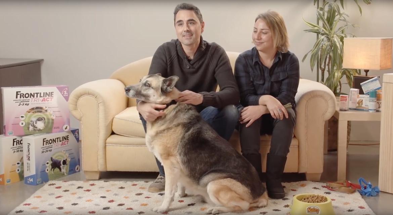 Campaña de adopciones 'Grandes perros para grandes personas'