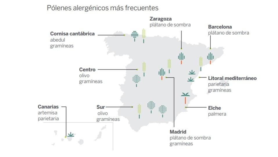 Rinitis alérgica: primaveras apocalípticas