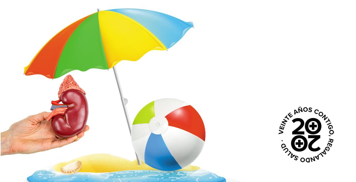 10 consejos para cuidar los riñones en vacaciones - Consejos de tu ...