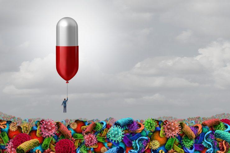 antibióticos en el mundo animal