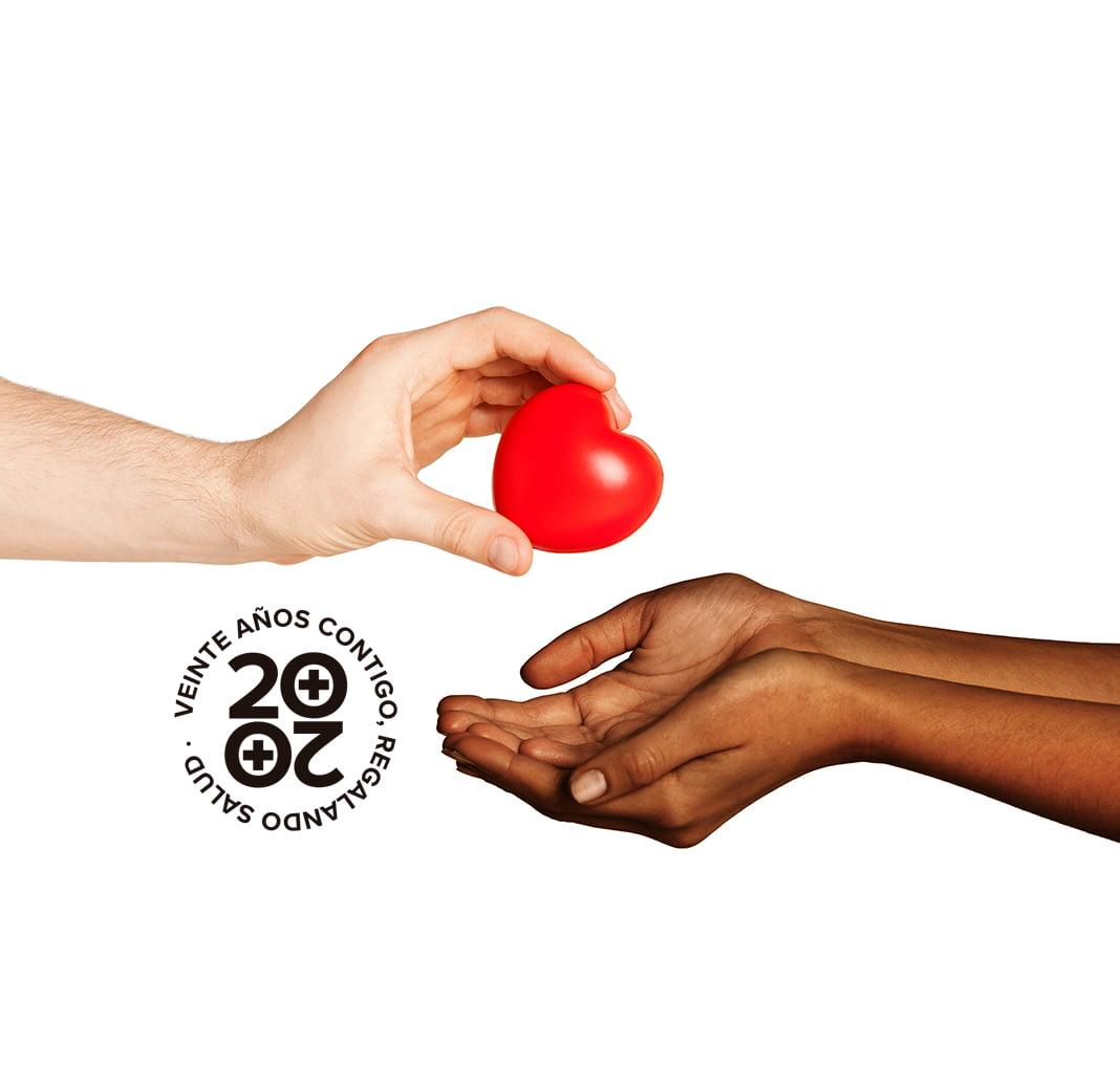 España confirma su liderazgo mundial en trasplantes y donación de órganos por 26 años consecutivos