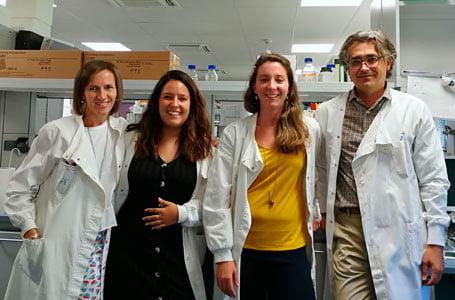 Una nanoterapia desarrollada por investigadores españoles evita el rechazo a órganos trasplantados