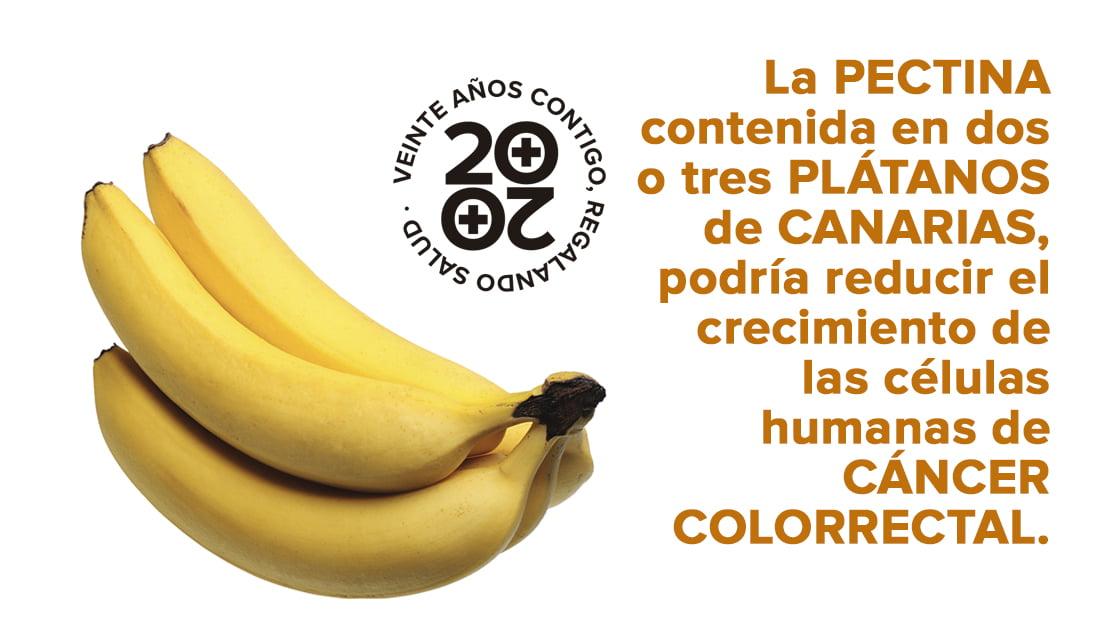 El plátano de Canarias, un aliado frente al cáncer de colon y la EII