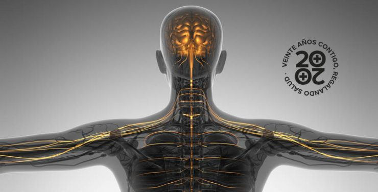 Qué son las enfermedades neuromusculares