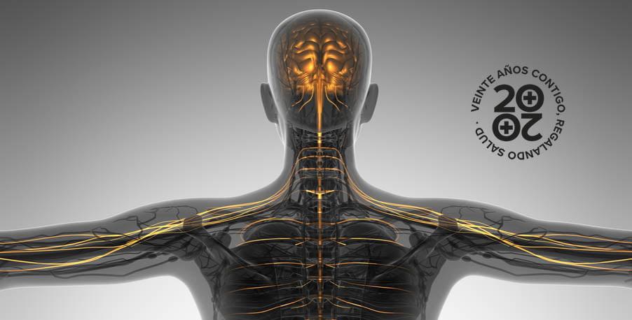 ¿Qué son y cómo se manifiestan las enfermedades neuromusculares?