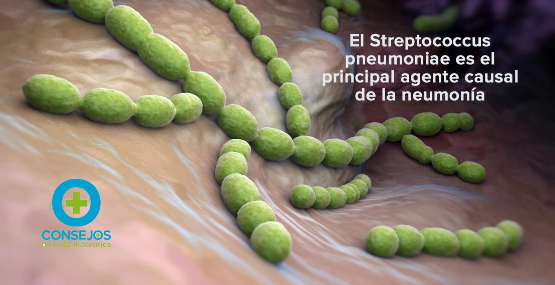 4 medidas preventivas frente a la neumonía