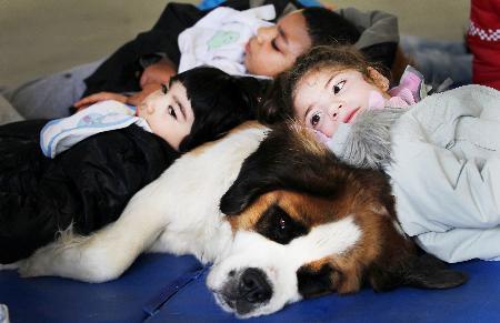 Los niños del Centro de Educación Especial Andrés Muñoz Garde participan en un programa de terapia asistida con animales