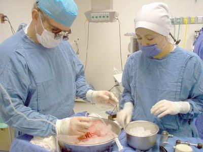 Nuevos marcadores biológicos permitirán alargar la vida de los trasplantes renales