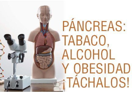 PÁNCREAS: tabaco, alcohol y obesidad, ¡táchalos!