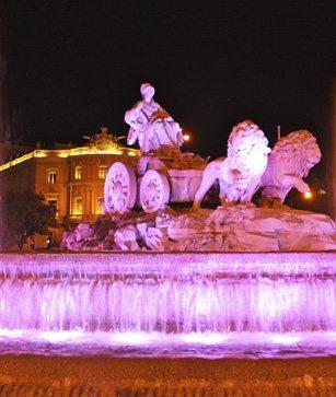 La Cibeles y el Ayuntamiento de Pamplona se iluminan de color púrpura en homenaje a los bebés prematuros
