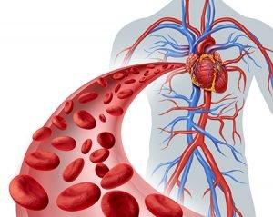 800.000 españoles reciben tratamientos anticoagulantes