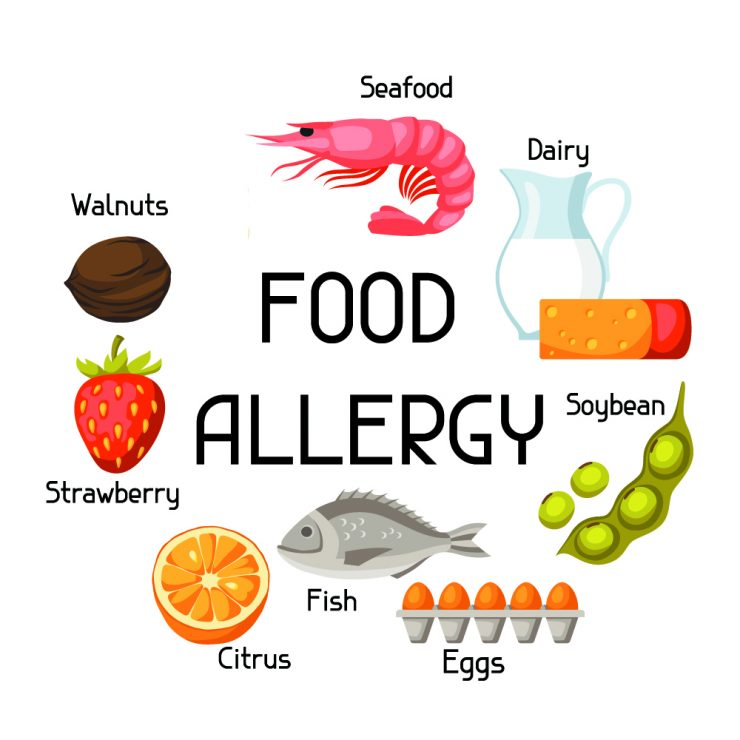 alergias alimentarias alergia alimentaria