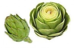 Los preparados farmacéuticos de plantas medicinales para adelgazar evitan el efecto yo-yo