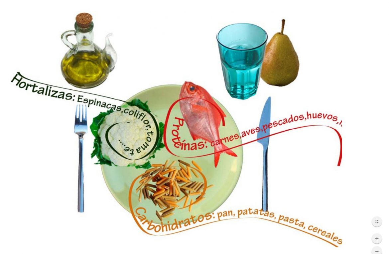 ¿Cómo debe ser un plato equilibrado y saludable?