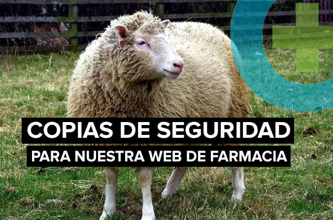 Copias de seguridad de tu web