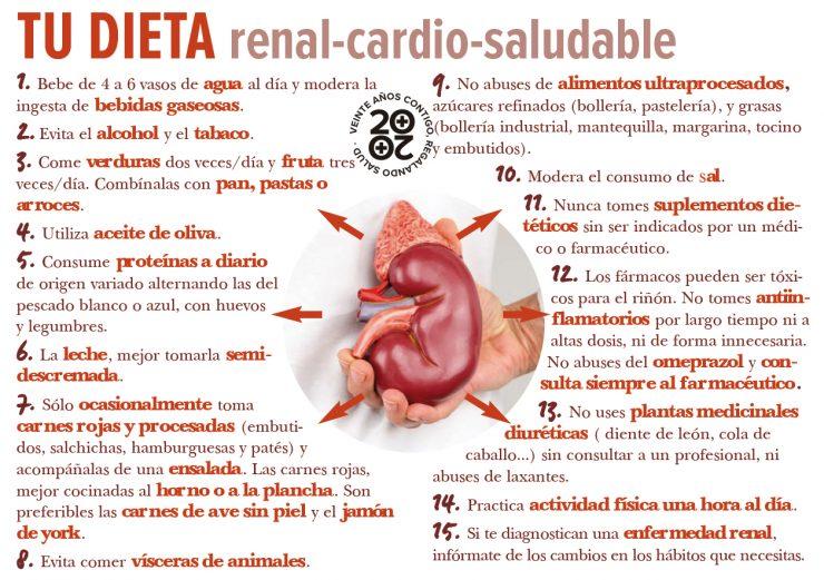 riñón sano