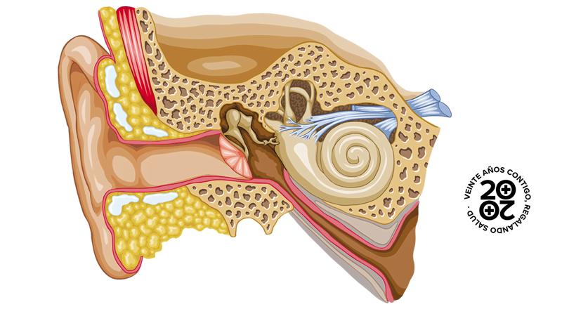 El 35% de los adultos sufrirá un barotrauma de oído este verano