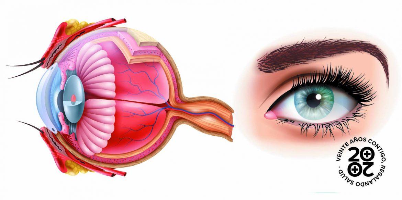 Estas son las patologías oculares más comunes a cada edad