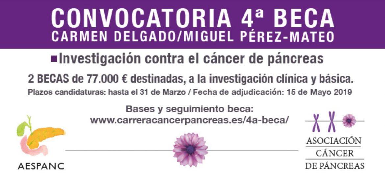 Se convocan dos becas para la investigación contra el cáncer de páncreas
