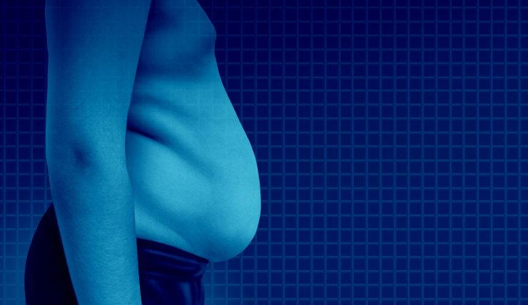 la obesidad provoca cancer