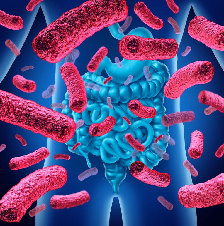 Conservar el equilibrio de la microbiota intestinal, primordial en la diarrea asociada al uso de antibióticos