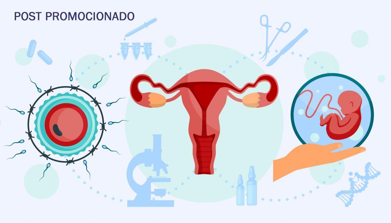 España, a la cabeza de Europa en reproducción asistida