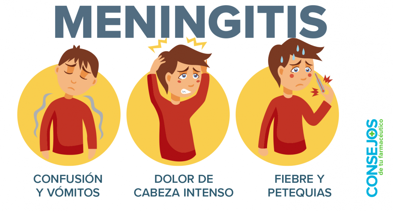 Meningitis: frenar la catástrofe