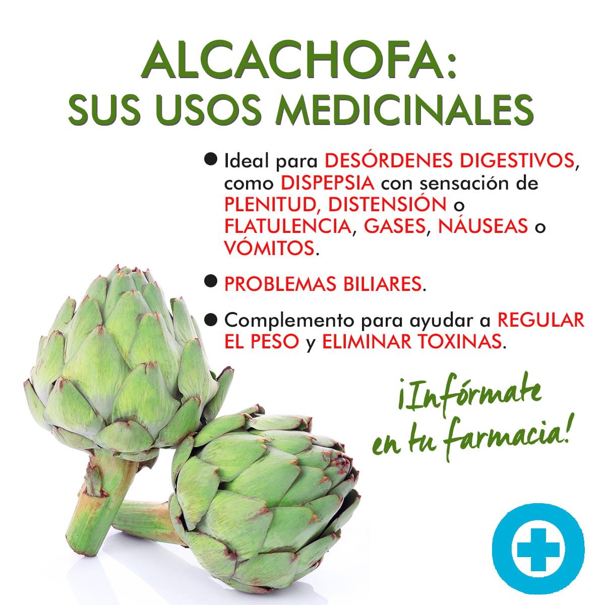 alcachofa medicinal